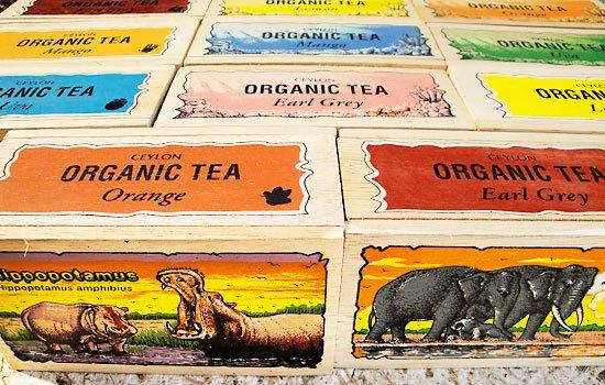 オーガニック紅茶(オレンジ) カバ