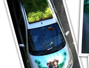 緑Car(りょっかー)