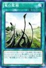竜の霊廟 【スーパーレア】【キズあり!プレイ用】