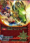 ドラゴンシールド 緑竜の盾【究極レア】