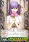 かけがえのない存在 桜【RR】