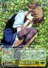 懺悔の果実 蒔菜【SR】