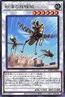 砂漠の飛蝗賊