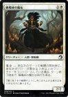 蝋燭林の魔女【フォイル】