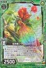虹色椿ブラウンシケーダ【ホログラム】