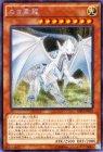 白き霊龍【シークレットレア】