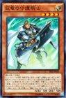 巨竜の守護騎士 【スーパーレア】