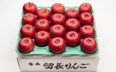 サンふじ秀(中玉)10Kg[36-40個入](送料込み)