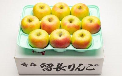 ぐんま名月秀(中玉)3Kg[10-11個入](送料込み)