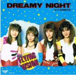 FLYING VISION/DREAMY NIGHT