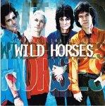 THE ROLLING STONES/WILD HORSES