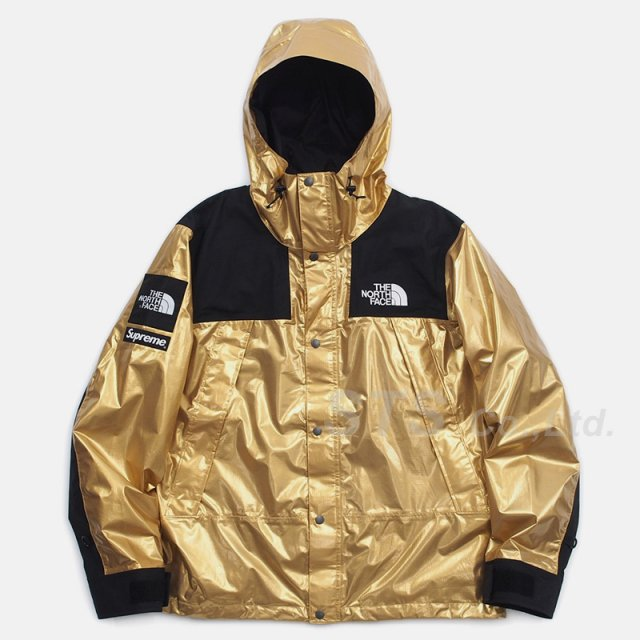 Supreme/The North Face Metallic Mountain Parka