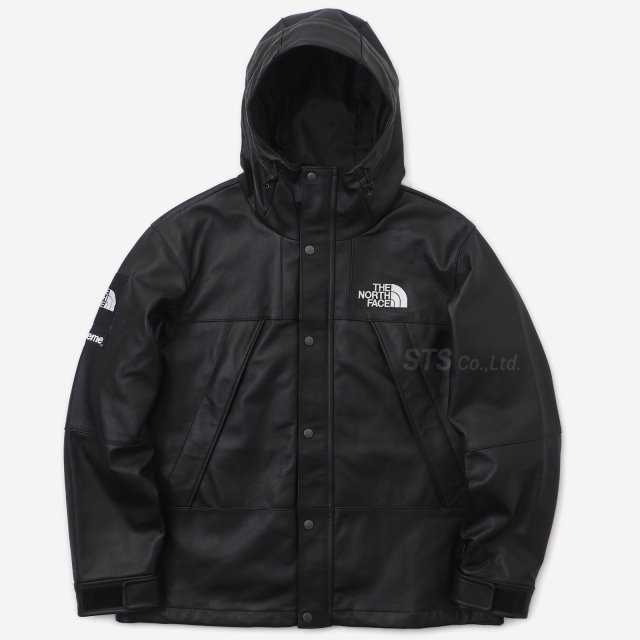 Supreme/The North Face Leather Mountain Parka