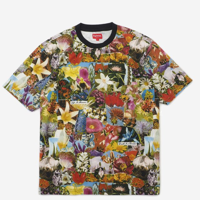 Supreme - Dream S/S Top