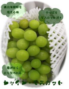 岡山県産 シャイン・マスカット2K(3房...