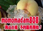 【2016年 白桃完売しました】岡山白桃物語  3K入りで2500円はお得!発送7月中旬から8月中旬