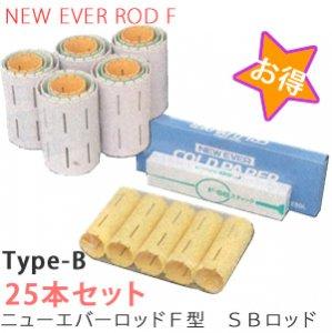 【新品】『ニューエバーロッドF型SBロッドセット』Type-B(25本セット)