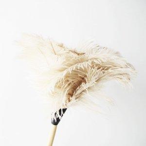 オーストリッチ(ダチョウ)羽はたき白50cm|REDECKER