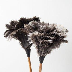 オーストリッチ(ダチョウ)羽はたき50cm|REDECKER