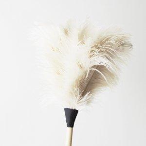 オーストリッチ(ダチョウ)羽はたき白70cm|REDECKER