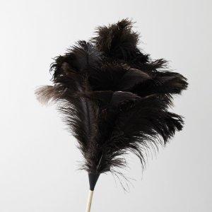 オーストリッチ(ダチョウ)羽はたき110cm|REDECKER