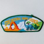 VINTAGE BOY SCOUT PATCH