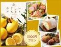体に優しい ごちそうグルメのカタログギフト (3000円プラン)
