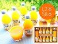 化学添加物不使用!安心おいしい♪人気のプレミアム柑橘ジュースセット(L2本、S8本)