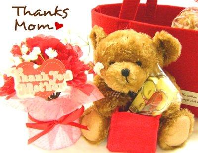 母の日に☆フェルトバッグ入りカーネーションポット&ネイルケアベアのギフトセット